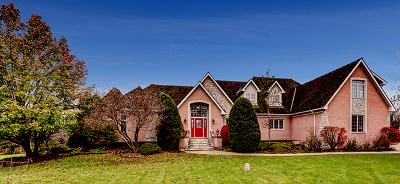 Palos Park Single Family Home Contingent: 12920 South 94th Avenue