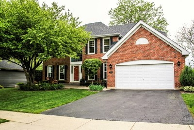 Bartlett Single Family Home Contingent: 1466 Polo Drive