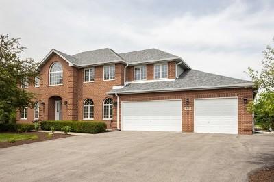 Lemont Single Family Home For Sale: 13197 Briar Patch Lane