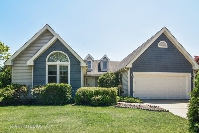 Lake Zurich Single Family Home For Sale: 40 Fern Road