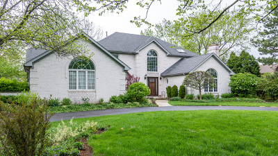 Burr Ridge Single Family Home Price Change: 6115 South Park Avenue
