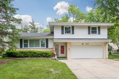 Villa Park Single Family Home For Sale: 507 South Yale Avenue