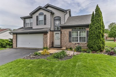 Oswego Single Family Home For Sale: 602 Salem Circle