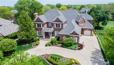 Burr Ridge Single Family Home For Sale: 6037 Garfield Avenue
