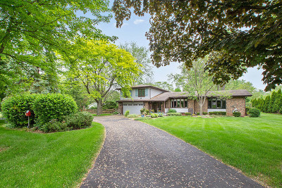 Orland Park Single Family Home For Sale: 13929 Will Cook Road