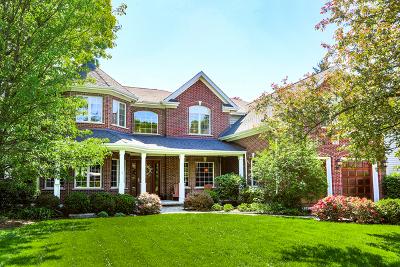Wheaton Single Family Home For Sale: 913 James Court