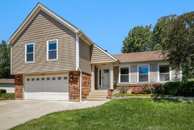 Lisle Single Family Home For Sale: 2636 Longview Drive