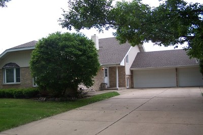 Mokena Single Family Home For Sale: 10746 Willow Avenue