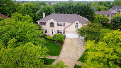 Ashbury Single Family Home For Sale: 3404 Shire Court