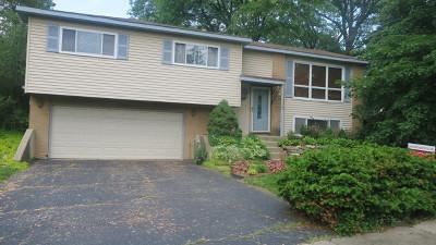 Woodridge Single Family Home For Sale: 3100 Everglade Avenue
