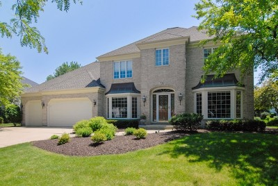 Breckenridge Estates Single Family Home For Sale: 720 Mesa Drive