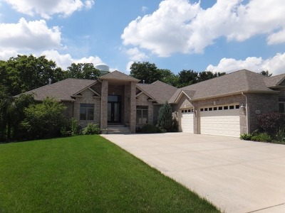 Frankfort Single Family Home For Sale: 20442 Grand Traverse Drive