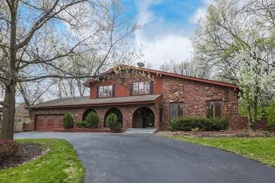 Homer Glen Single Family Home For Sale: 16210 Oak Valley Trail