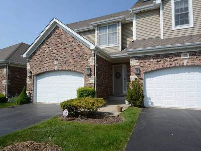 Palatine Condo/Townhouse For Sale: 1273 South Falcon Drive