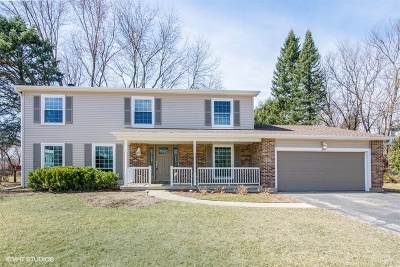 Algonquin Single Family Home For Sale: 301 Circle Drive