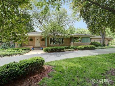 Palatine Single Family Home For Sale: 379 Meadow Lane