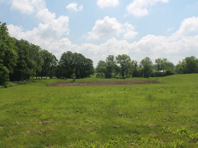 Elburn Residential Lots & Land For Sale: Lot 4 South Bowgren Circle