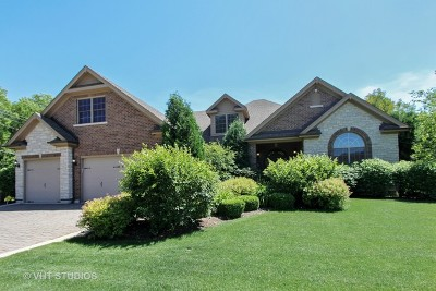 Lake Zurich Single Family Home For Sale: 1138 Sycamore Drive