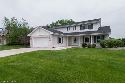 Woodridge Single Family Home For Sale: 9063 Lancaster Lane