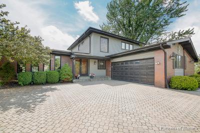 Bloomingdale Single Family Home For Sale: 250 Eagle Lane