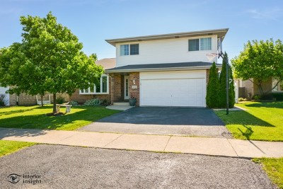 Orland Hills Single Family Home For Sale: 16336 Terrace Court