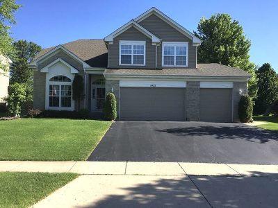 Algonquin Single Family Home For Sale: 1451 Richmond Lane