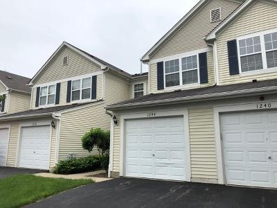 Carpentersville Rental For Rent: 1244 Brookdale Drive