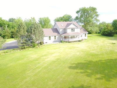 Minooka, Channahon Single Family Home For Sale: 8745 East Hansel Road