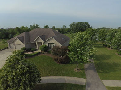 Frankfort Single Family Home Contingent: 22595 Autumn Drive