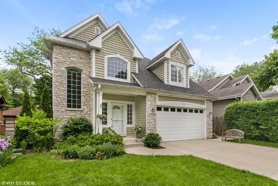 Highland Park Single Family Home For Sale: 1219 Glencoe Avenue