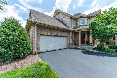 Palos Heights Condo/Townhouse For Sale: 3002 Spyglass Circle #3002