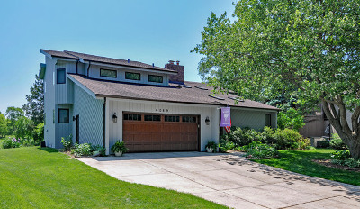 Lisle Single Family Home For Sale: 6089 Miller Lane