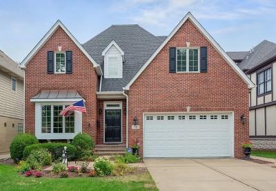 La Grange Single Family Home For Sale: 741 South Waiola Avenue