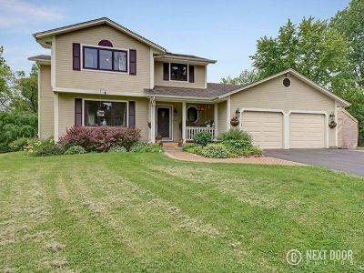 Elgin Single Family Home For Sale: 9n818 Bowes Bend Drive