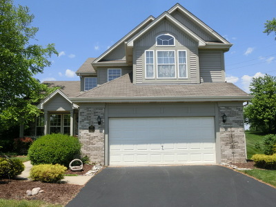 Frankfort Single Family Home For Sale: 21397 Chadwick Court