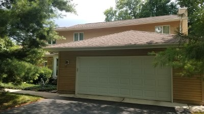 Palatine Single Family Home For Sale: 351 West Michigan Avenue