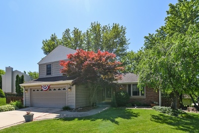 Streamwood Single Family Home For Sale: 14 Manchester Court