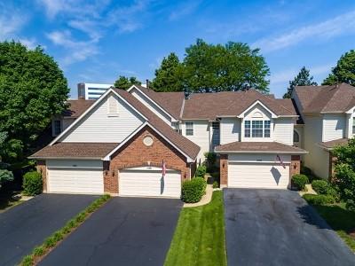 Hoffman Estates Condo/Townhouse For Sale: 1538 Poplar Creek Drive