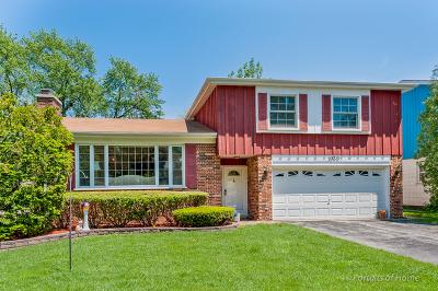 Villa Park Single Family Home For Sale: 1039 South Myrtle Avenue
