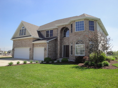 Channahon Single Family Home For Sale: 26460 South Justin Drive