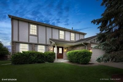 Schaumburg Single Family Home For Sale: 620 Prince Edward Drive