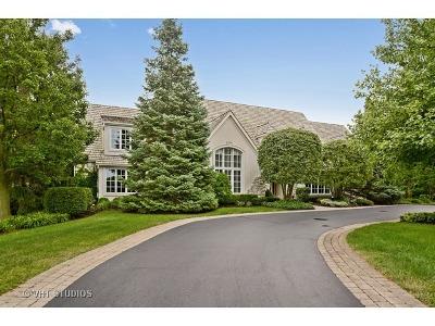 Palos Park Single Family Home For Sale: 12813 South Misty Harbour Lane