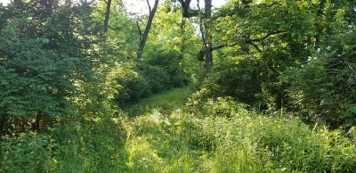 Ogle County Residential Lots & Land For Sale: 315 Slippery Rock Drive