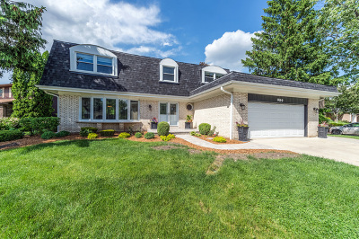 Schaumburg Single Family Home For Sale: 989 Spring Cove Drive