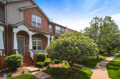 Lisle Condo/Townhouse For Sale: 6126 River Bend Drive