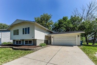 Downers Grove Single Family Home For Sale: 767 72nd Street
