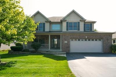 Elburn Single Family Home For Sale: 1495 Melbourne Street
