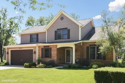 Palatine Single Family Home For Sale: 922 East Krista Court