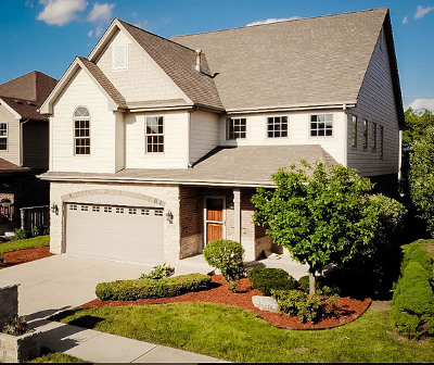 Orland Park Single Family Home For Sale: 16821 Sheridans Trail