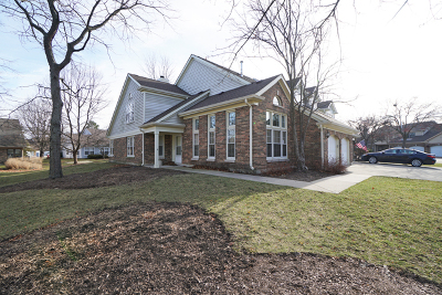 Buffalo Grove Condo/Townhouse For Sale: 271 Willow Parkway